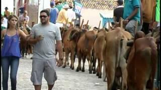 6ª Festa do Carro-de-Boi em Heliópolis - 2ª parte