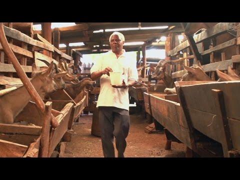 Transformer l'agriculture pour améliorer les conditions de vie en Afrique de l'Est
