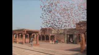 Fatehpur Sikri and Agra Fort sightseeing