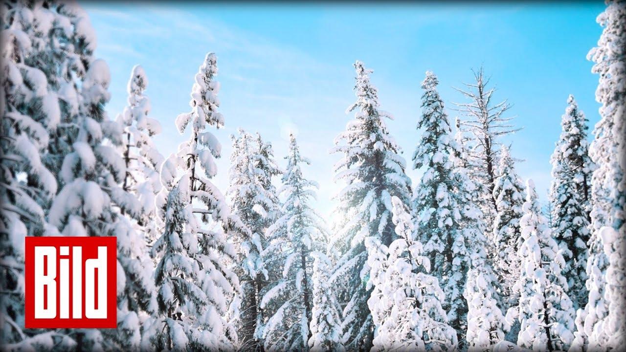 Schnee zu Weihnachten? Die Polarluft bringt uns Eiseskälte zurück ...