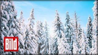 Schnee zu Weihnachten? Die Polarluft bringt uns Eiseskälte zurück