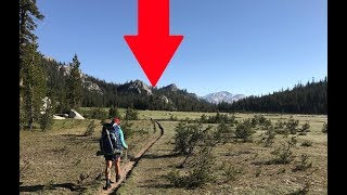 He Was Out Hiking And Found Something Big That Hasn't Been Seen In 100 Years