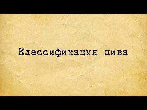 КЛАССИФИКАЦИЯ ПИВА