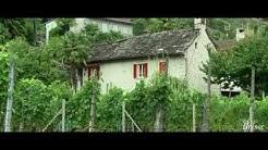 Video Postcard: Tegna (Terre di Pedemonte - Verscio / Cavigliano)