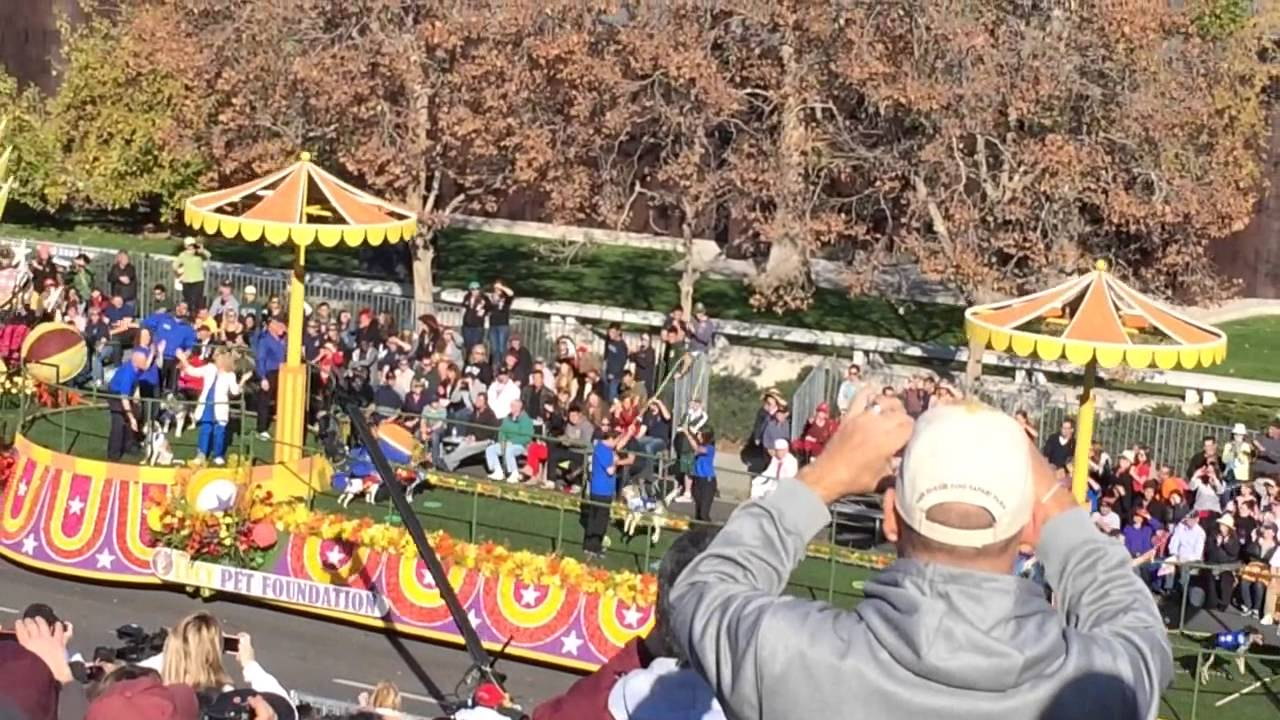lucy pet foundation float in 2014 rose parade youtube. Black Bedroom Furniture Sets. Home Design Ideas