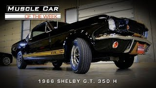 Muscle Car Of The Week Video #46: 1966 Shelby G.T.350H