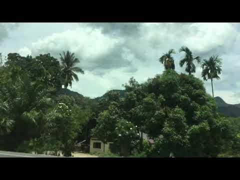 Bangkok to Phuket | Surat Thani part 1 | Life Love Thailand