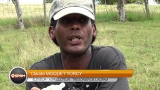 Claude Moquet Torcy Eleveur Agriculteur Tresorier Agpam  attaques sur betail