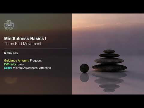 Basic Mindfulness Meditation I: Three Part Movement