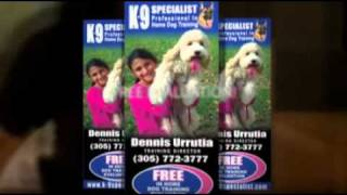K9 SPECIALIST IN HOME DOG PUPPY TRAINER TRAINING MIAMI PINECREST