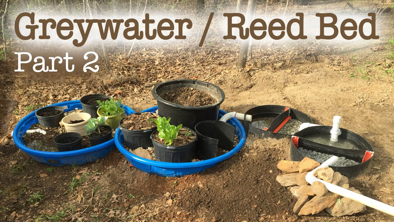 Greywater reed bed filtration system part 2 youtube for Pond water filtration systems home