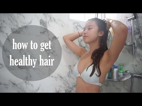 Hair Care Routine for Oily Scalp & Dry Hair
