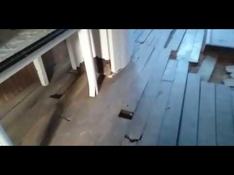 Em vídeo, moradora de Tarauacá mostra casa em situação precária e pede ajuda
