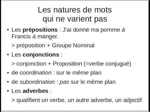 La grammaire française expliquée à tout le monde