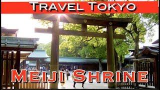 Meiji Shrine To Shibuya Crossing A Perfect Tokyo Day