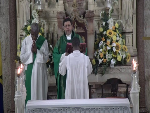Holy Mass - 33rd Sunday of Ordinary Time