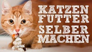 Katzenfutter selbermachen - B.A.R.F.