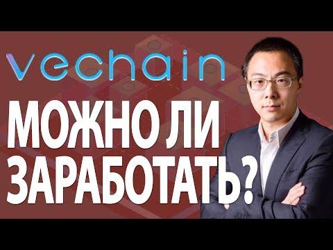 Обзор криптовалюты VeChain - стоит ли покупать монету VET сейчас?