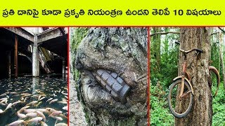Top 10 proofs that nature has control over everything | Bmc facts | Telugu