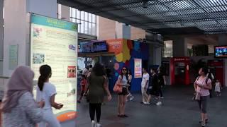 Pre-Kim/Trump Singapore Summit 2018 Video: Trip To Capella Hotel Via Sentosa (1).