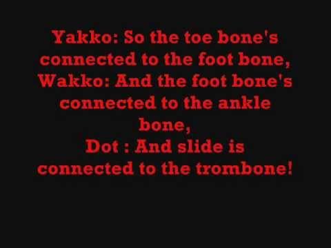 Bones In The Body By Animaniacs  lyrics