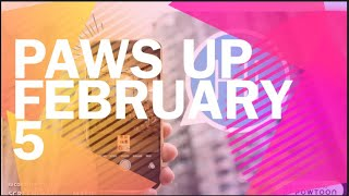PAWS UP  Week of 2/5 Virtual Recognition and BR/CK/MS News!