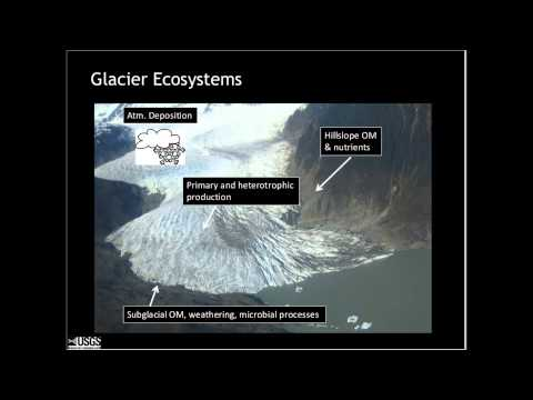 From Icefield to Ocean: Impacts of Glacier Change in Alaska