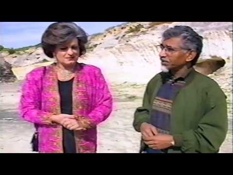 Evita Bezuidenhout interviews Minister of Transport Mac Maharaj in the 1994