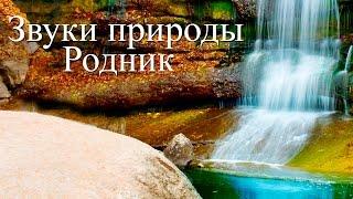 Скачать Звуки воды Чистый горный родник Программа для сна и релаксации