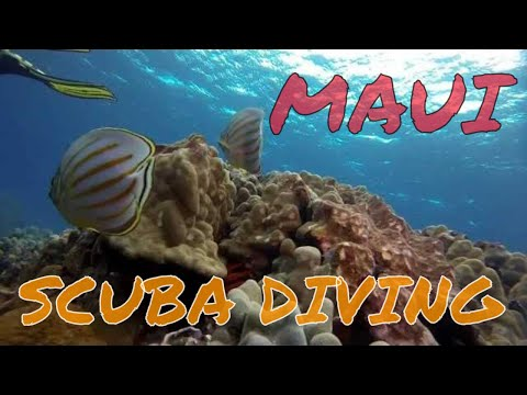Maui epic scuba diving - Hawaii 2014 GoPro Hero 3