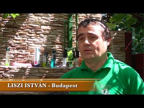 TokyoSolar napkollektor rendszer tapasztalatok - Liszi István, Budapest