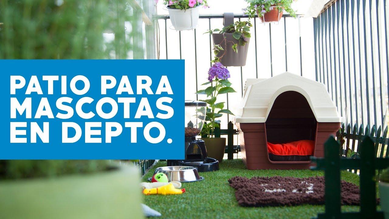C mo hacer un patio para mascotas en departamentos youtube Como organizar un jardin grande