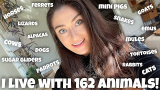 All My Pets 2021 | 160+ Pets!