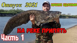 ОТПУСК 2021 на реке Припять Часть1 Ловля сома на реке Припять