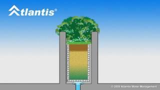 Planter Box Drainage