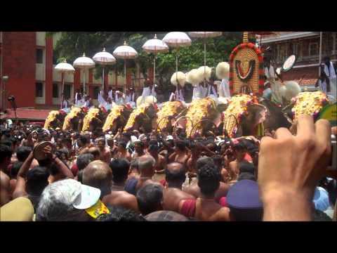 Thrissur Pooram 2011-DAY 1 -HD