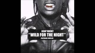 Wild for the night | Asap Rocky feat Skrillex  (Dr Banger REMIX)