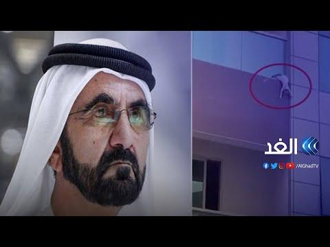 الشيخ محمد بن راشد يبحث عن منقذي قطة في دبي عبر توتير   #شير