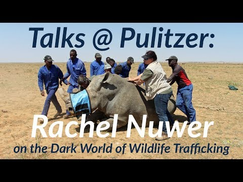 Talks @ Pulitzer: Rachel Nuwer on the Dark World of Wildlife Trafficking