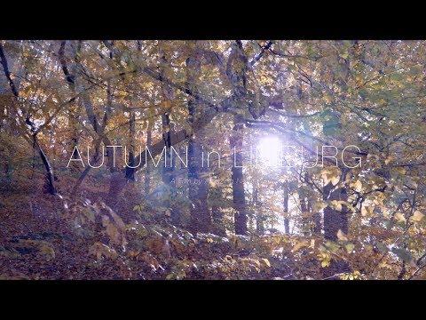 Autumn in LImburg (NL) - 4k