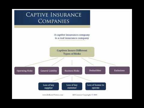 Captive Risk Coverage Examples For Your Business