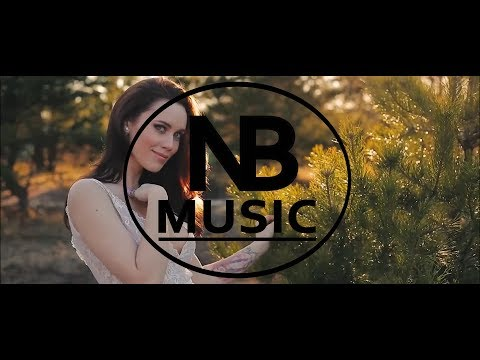 Raven & Kreyn X Moji X Illusion - Dream Forever ( Official NB Music Video HD )