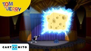 Tom & Jerry auf wilder Jagd | Wettkampf der Magier | Boomerang