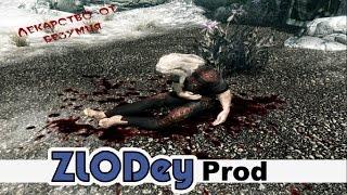 The Elder Scrolls V: Skyrim - Квест: Лекарство от безумия