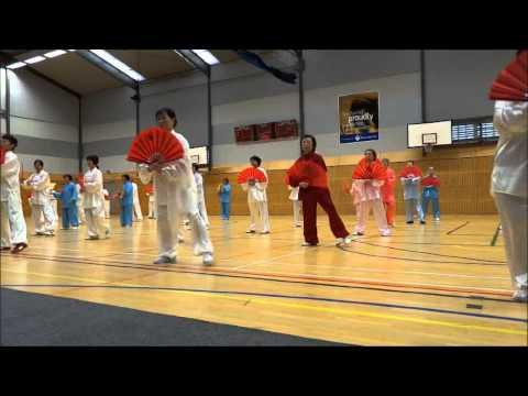 Taiji Gong Fu Fan, World Tai Chi & Qigong Day 2013, Auckland NZ
