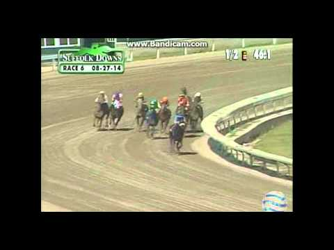 Suffolk Downs - 8/27/14 - Race 6 - Claiming - Pan View