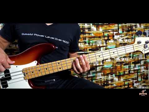 Garth Brooks- Friends In Low Places (Bass Cover)