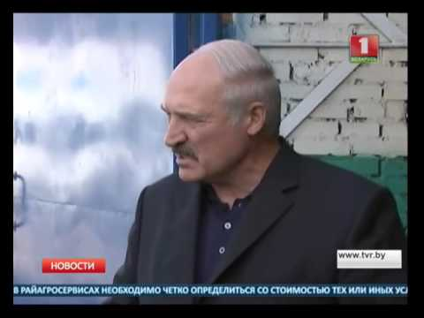 Продажа и покупка земельных участков на крупнейшей площадке объявлений в беларуси. Множество предложений, цены на участки. Продавай и покупай на kufar!
