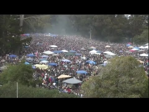 THAT'S NOT FOG: Watch San Francisco cannabis enthusiasts celebrate 4/20 on Hippie Hill