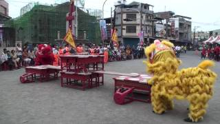 舞獅表演 廣東獅 興化國小B隊 屏東縣縣長盃舞龍舞獅錦標賽